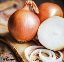 Сырой лук — польза и вред для организма человека. Чем для человека опасен репчатый лук