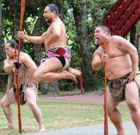 Ритуальный танец племени маори хака. Дикие танцы маори: Хака