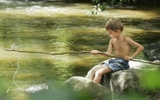 Что нужно начинающему рыбаку. Что нужно для рыбалки начинающему. Ловись, рыбка — большая и маленькая