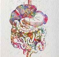 Упражнения для желудочно-кишечного тракта. Упражнения для работы кишечника
