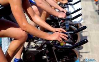 Подготовительный период тренировки велосипедистов-шоссейников