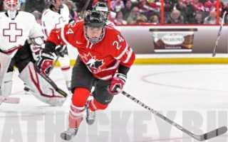 Хоккей для чайников. Что нужно знать об игре. Русский хоккей спасет молокозавод