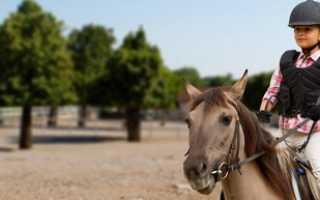 Чем полезен конный спорт для женщин. Конный спорт для детей: со скольки лет и какая польза
