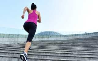 Тренажер лестницы ходьба вверх. Как правильно и с пользой ходить по лестнице для здоровья и похудения. Выбираем тренажер, имитирующий ходьбу по лестнице