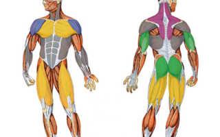 Попеременное напряжение и расслабление. Простые и эффективные способы как снять напряжение мышц во всем теле