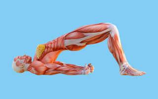 Упражнения при опущении мочевого пузыря у женщин. «Фитнес» для мочевого пузыря: упражнения Кегеля и другие виды тренировки. Но возможно правильнее лечить не следствие, а причину