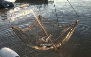 Сделать экран ловли рыбы руками. Экран для ловли рыбы своими руками. Изготовление рыболовного экрана своими руками