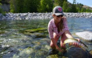 Ловить рыбу в мутной воде значение. Щука в мутной воде – поведение, приманки, как поймать. Поймать во сне руками большую рыбу