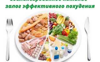 Сколько углеводов нужно в день для похудения. Сколько нужно белков жиров и углеводов в день чтобы похудеть