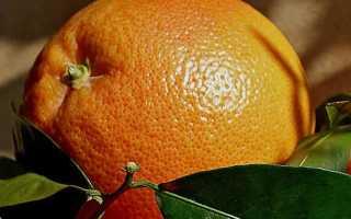 Эффективны ли мандарины для похудения. Можно ли поправиться от мандаринов? Другие варианты диеты