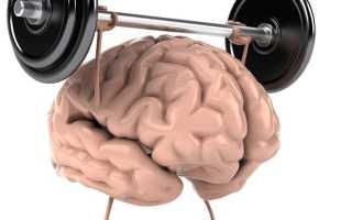Ментальная связь мозг мышцы. Связь «мозг-мышцы»: как заставить свои мышцы работать. Развитие мышечной памяти