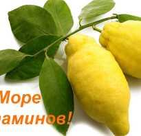 С помощью лимона можно похудеть. Эфирное масло лимона для похудения. Польза лимона для фигуры