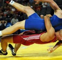 Чем вольная борьба отличается от классической. Вольная и греко-римская борьба: помощь будущему спортсмену. Чем борьба отличается от других единоборств