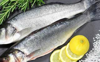 Рыба окунь полезные свойства. Морской окунь — польза и вред для организма человека. Что для этого нужно