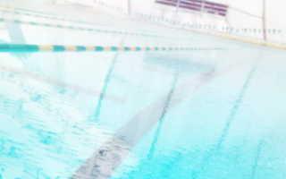Слоганы про плавание и бассейн. Цитаты про отдых в бассейне