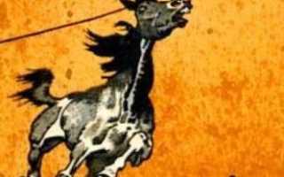 Произведения литературы где говорится о крестьянских лошадях. Книги о лошадях