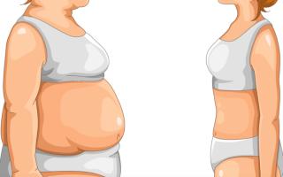 Почему жир откладывается только на животе. Семь причин, почему вам не удается избавиться от жира на животе. Что же делать