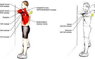 От чего могут болеть мышцы спины. Почему болят мышцы спины и чем лечить? Остальными причинами считаются