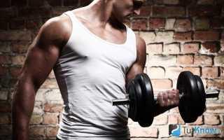 Тренировки единоборств в домашних условиях. Кроссфит для бойцов. Необходимое спортоборудование для домашних тренировок бойца