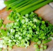 Соленый зеленый лук на зиму в банках. Как правильно засолить зеленый лук в домашних условиях. Пропорции для заливки на три литровых банки лука