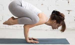 Поза вороны. Обычно бакасана, или поза вороны, — это первый баланс на руках, с которым знакомят новичков. Как выполняется какасана поза ворона в йоге. Поза ворона – какасана для сильных мышц и сухожилий