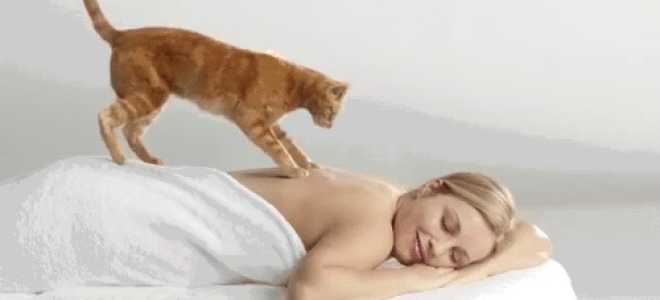 Можно ли похудеть после массажа спины. Миф: от массажа худеют — Юлия Малицкая. Противопоказания и показания
