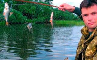 Сделать телевизор для рыбалки пошаговые действия. Как сделать телевизор для рыбалки рыболовный экран своими руками