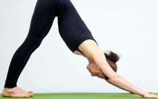 Хатха-йога. Позы йоги (асаны). Поза лебедя (Шванасана). Намасте, уважаемый практик