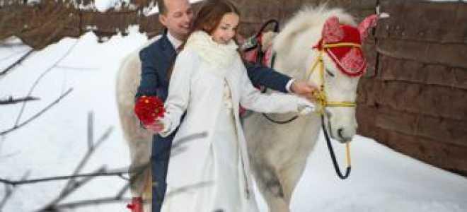 Фотосессия пары с лошадьми. Фотосессии с лошадьми. Идеи сценария для проведения свадебной фотосессии