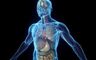 Опасность анаболиков. Влияние анаболических стероидов на организм. Анаболические стероиды: последствия употребления и побочные эффекты. Научные исследования