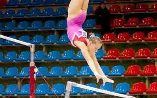 Что такое многоборье в спортивной гимнастике. Что такое гимнастика