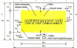 Размеры площадки для игры в волейбол. Правила игры в волейбол