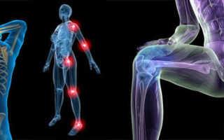 Упражнения на сухожилия всего тела. Упражнения для укрепления сухожилий и связок. Занятия, наиболее полезные для укрепления суставов