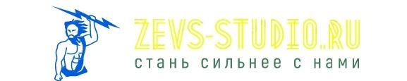 zevs-studio.ru